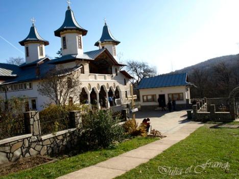 Manastirea Crsna