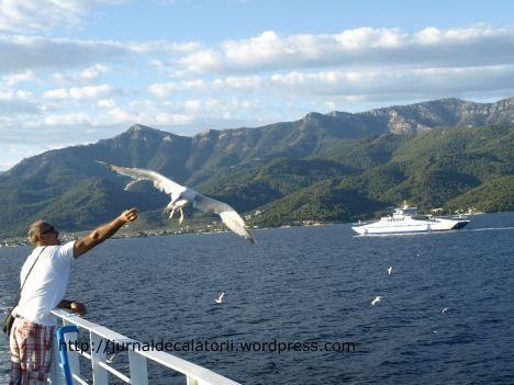 Pescarus Thassos.jpg
